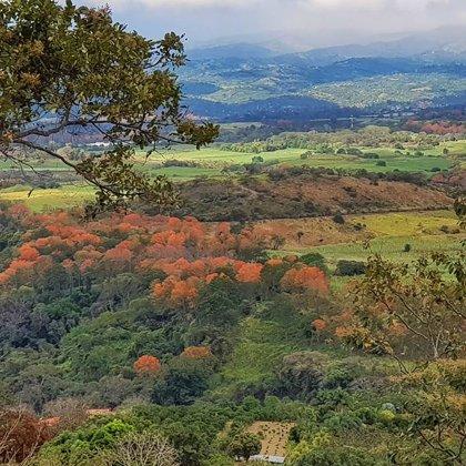 Kostarika, Nauma acīm skatoties